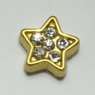 Charm ster strass goud